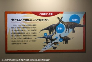 2017073021メガ恐竜展201@ 大阪南港ATCホール。19