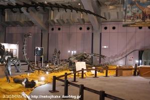 2017073024メガ恐竜展201@ 大阪南港ATCホール。22