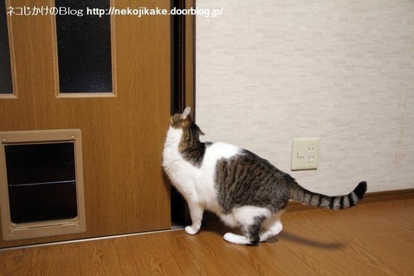 2014092501ドアを開ける方法。