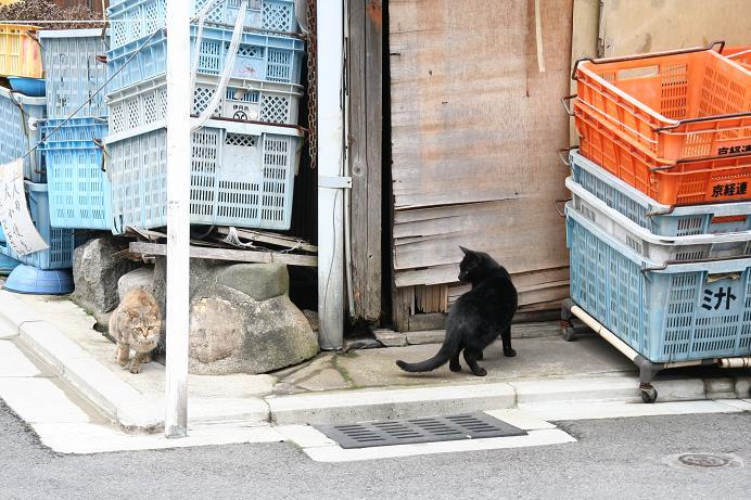 今日は京へ。その2