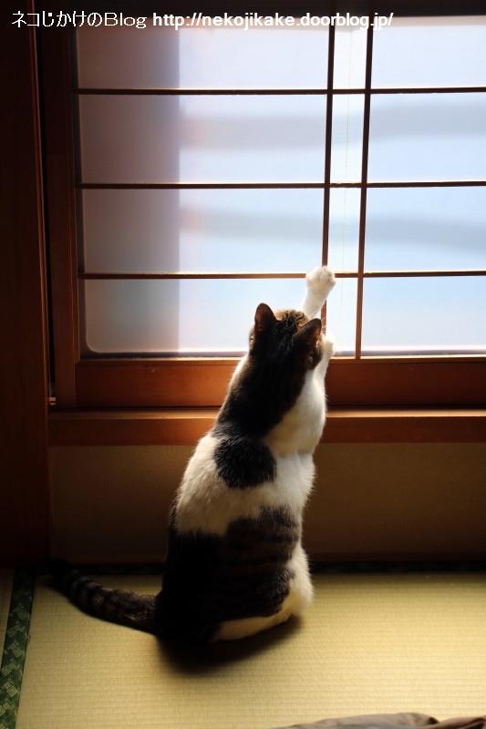 2018041801窓を開けろ。