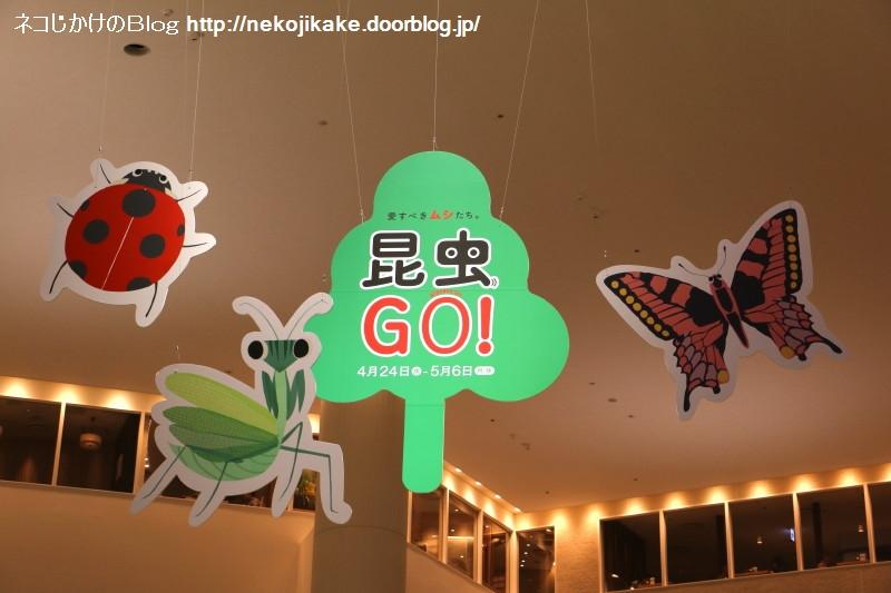 2019050105昆虫GO!@阪急うめだ本店 9F 祝祭広場。1