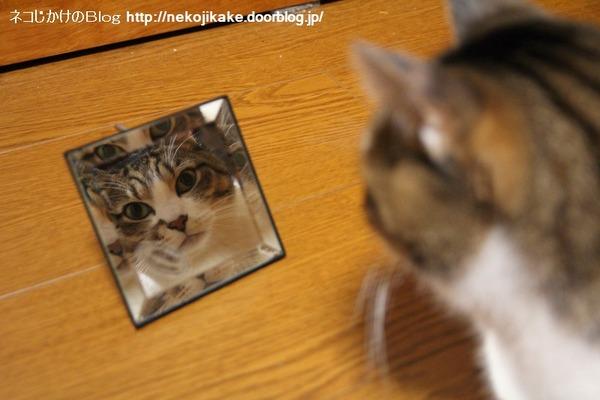 2014012101鏡よ鏡。
