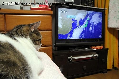 台風が来る。