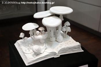 2018102118きのこ!キノコ!木の子!@大阪市立自然史博物館。14