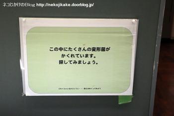 2018102114きのこ!キノコ!木の子!@大阪市立自然史博物館。10