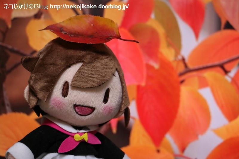 2017110203紅葉の秋。