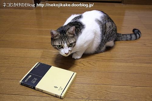 この本をどうしろと?