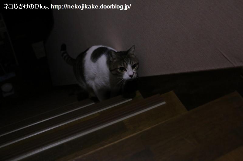 2017010801暗い階段で一人。