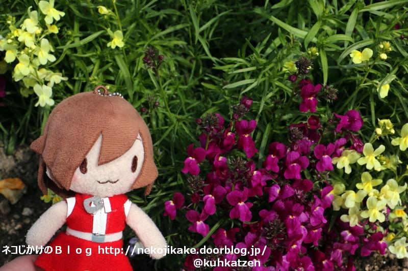 2020020702花壇で休憩。