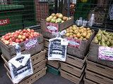 Borough Market-11