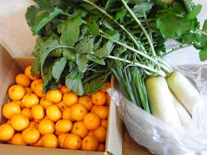 RIMG1022野菜