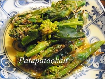 page菜の花