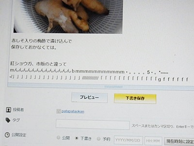 page画面