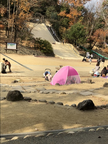 公園IMG_6661