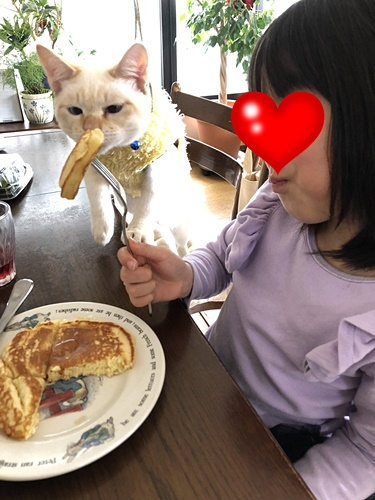 nanaちゃんとロア