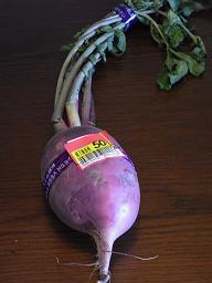 ROT02273紫大根