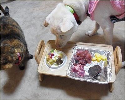 pageyukiご飯