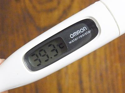 page体温