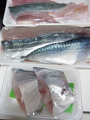 pageお魚