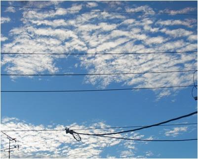 pageうろこ雲