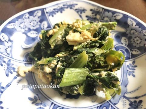 IMG_2712小松菜