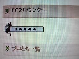 RIMG0407カウンター