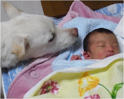 pageyuki_201501191432395f0.jpg