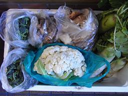 RIMG1135野菜