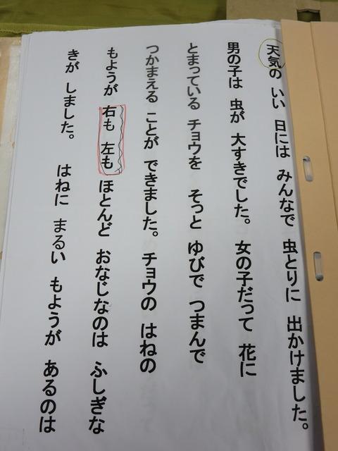 IMG_0440