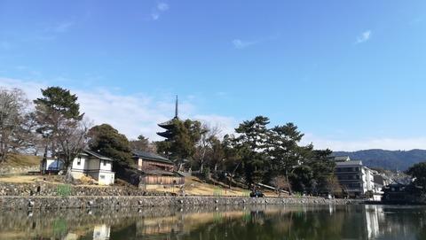 猿沢池と五重塔