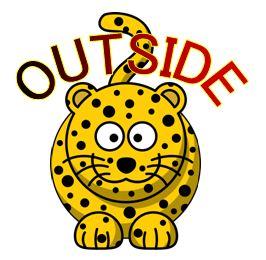 outside leopard