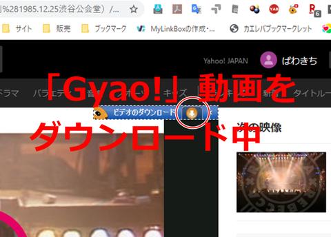 tver-gya0-roku-001