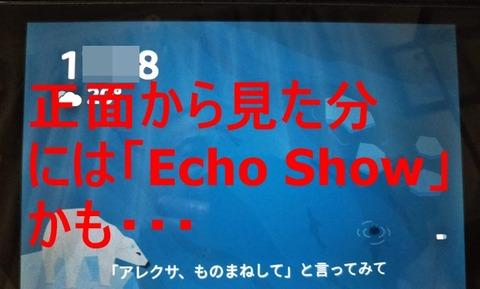 fire-echo-006