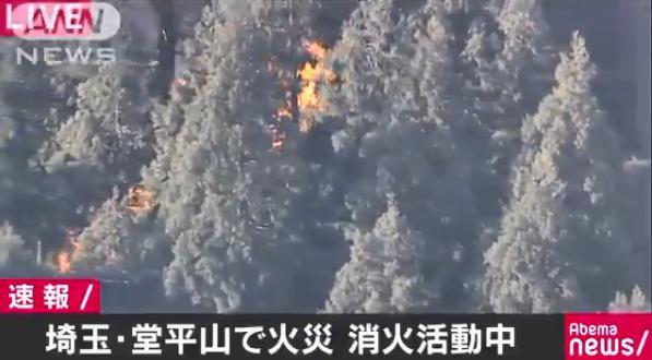【悲報】埼玉西部、炎上!