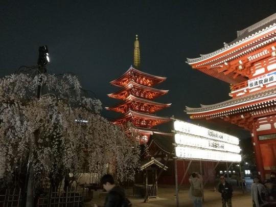 夜の浅草寺~五重塔