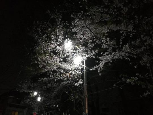 中野5丁目