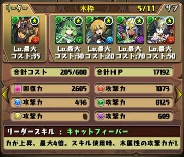 タケミカヅチ降臨挑戦パーティ11