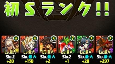 火の猫龍Sランク11