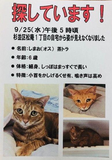 shimaokun (2)