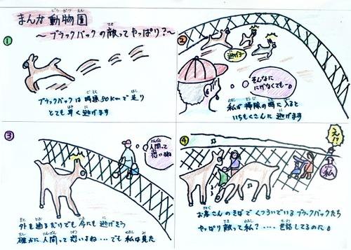 asa_zoo-m222