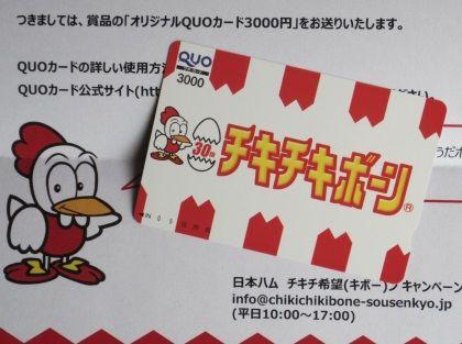 日本ハム チキチキボーン(2)0629