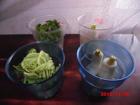 再生野菜1226小