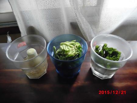 再生野菜1221小
