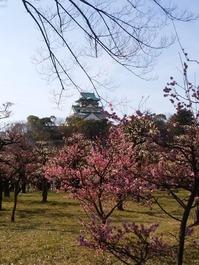 大阪城梅園 (20)