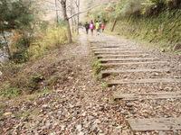 廃線ハイキングコース (60)