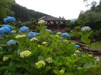 宇陀市花の郷滝谷 (6)