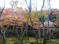 2017嵐山 (29)