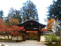 2017嵐山 (43)
