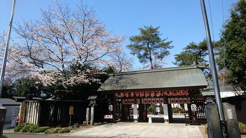 0-5桜木神社 (1)